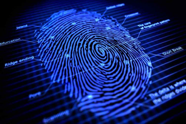 Fingerprints: Can they reveal your ethnicity?