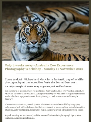 Check out this Trekabout Photography Workshops bulletin!