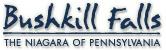 Bushkill Falls: The Niagara of Pennsylvania