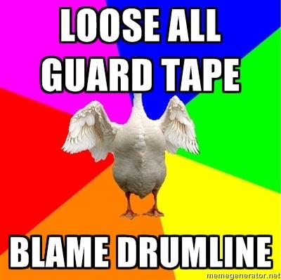 Color Guard Goose
