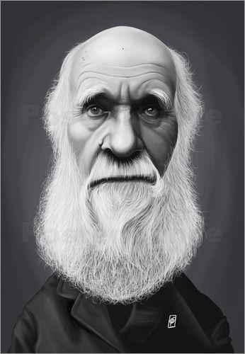 Rob Snow | caricatures - Charles Darwin art | decor | wall art | inspiration | caricature | home decor | idea | humor | gifts