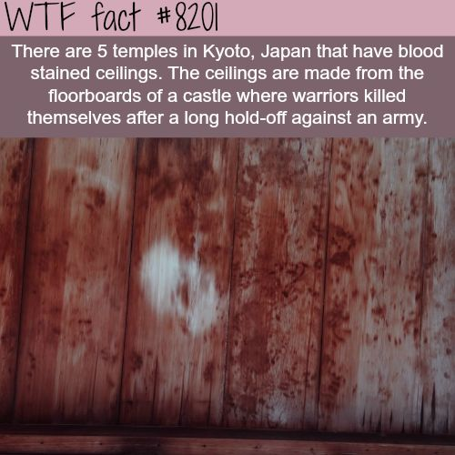 Blood stained ceilings of Kyoto temples - WTF fun fact