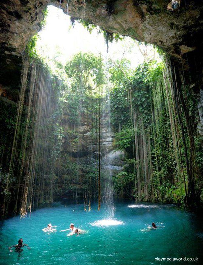Paradise Deep Down  Cenote-Ik-Kil - Yucatan, Mexico