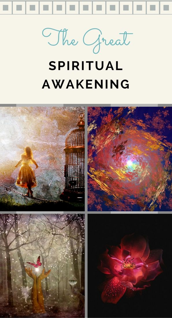 A spiritual awakening is the beginning of our great blossoming and liberation. On the outside, we may appear the same but within our psyche, new worlds are being born.