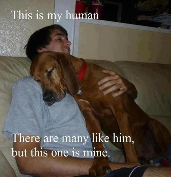 Cute...I have a dog that probably thinks like this