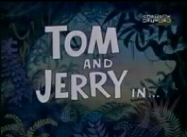 Tom and Jerry Sorry Safari