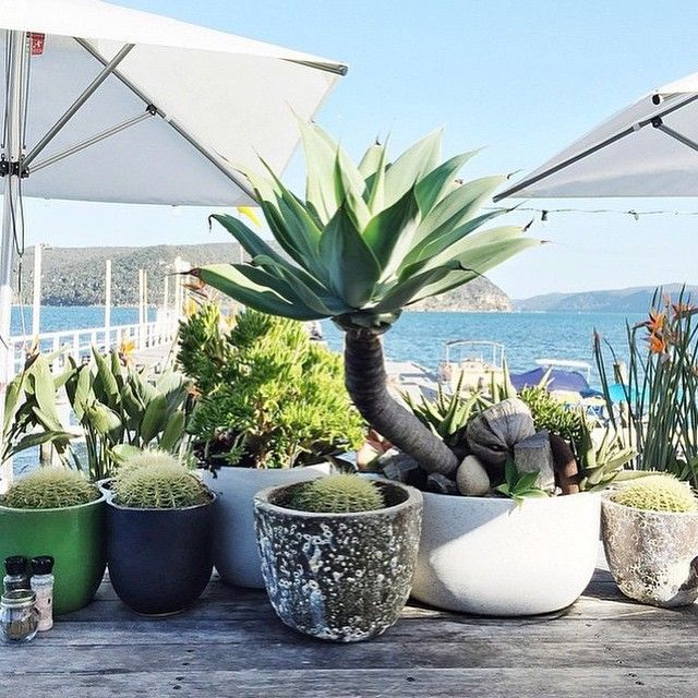 13 Amazing Places To Eat Breakfast By The Beach In Sydney