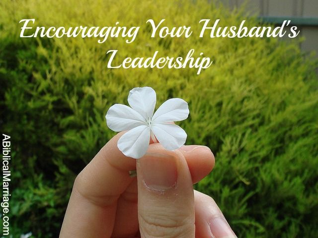You may have a husband who loves the Lord and is seeking to grow in grace, but no man is perfect. Even godly husbands have seasons in which they struggle to lead their families.  These moments are disheartening to the wife who longs to feel genuine respect for her husband. So what's a God-fearing wife to do? READ MORE!
