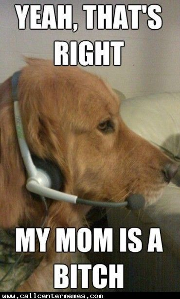 f4a1f1cdecd104a66f2c5c46ffa8e767 dog memes dog funnies 225 best computer support images on pinterest tech support,Support Funny Memes