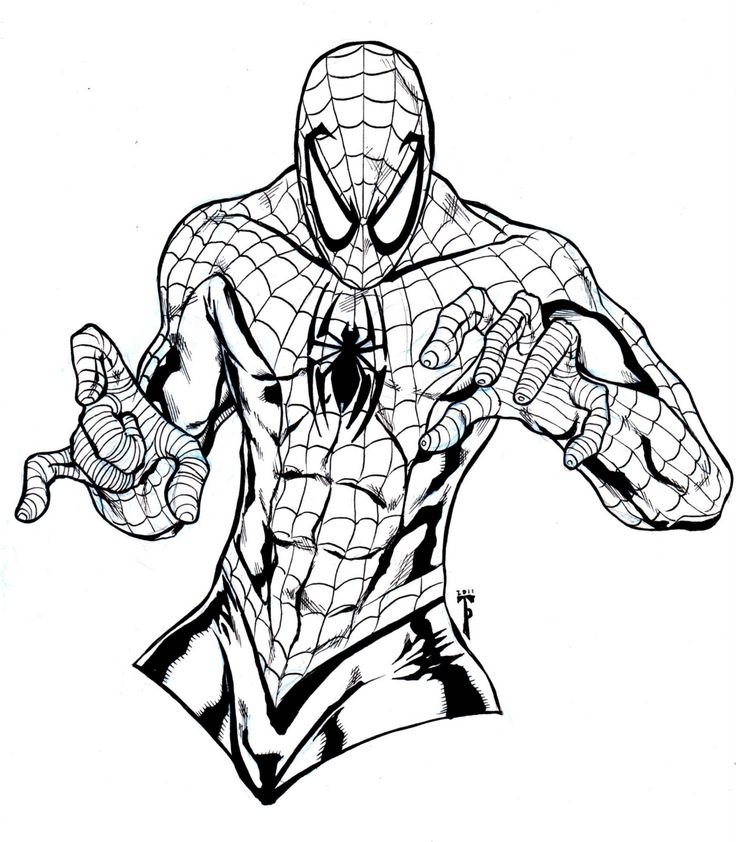 42 best Spider-man Tattoo Outlines images on Pinterest Tattoo - fresh spiderman coloring pages for free