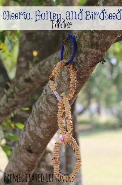 How to Make a Cheerio Bird Feeder - Here is a tutorial for putting together a simple cheerio bird feeder with your kids to attract birds to your backyard.