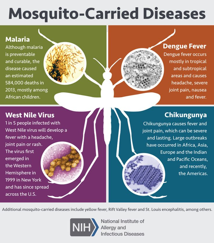 Diseases Physical Ailments: 17 Best Images About Scientific Images On Pinterest