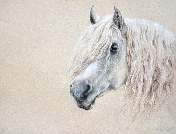 Original horse portrait. drawing . White horse on a cream background. Delicate pastel drawing.