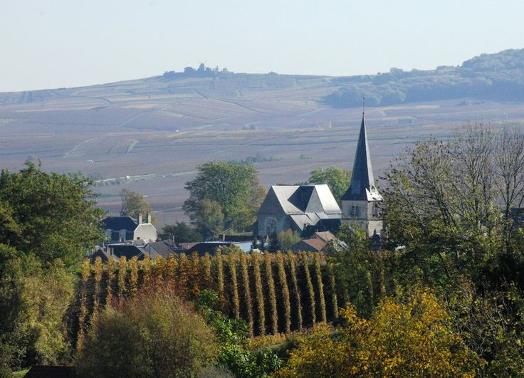 Znalezione obrazy dla zapytania landscapes Champagne