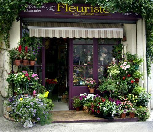 photo1 pas de porte fleuriste 1 5xdxaxbw340653 jpg 498 215 429 fleur shoppe photos
