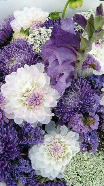 Love the shades of purple