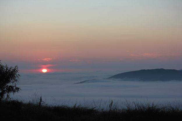 Mist in the valley by Christeen Grant