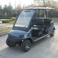 China Factory 4 Seats Electric Mini Buggy with EEC (DG-LSV4)