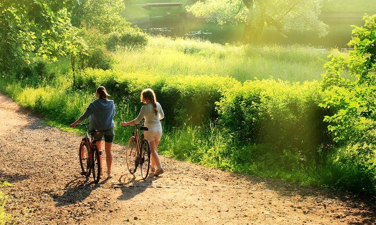 steco draagsystemen vr de fiets Consumer | Steco B.V.