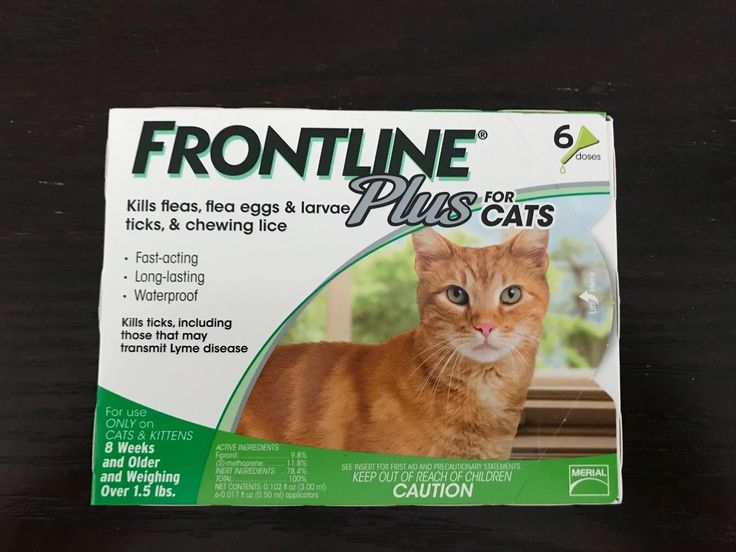 Flea and Tick Remedies 20738: Frontline Plus For Cats 6 Month Supply Free Shipping -> BUY IT NOW ONLY: $54.99 on eBay!