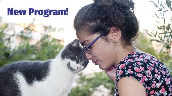 ABC Cat Training Program | Animal Behavior College