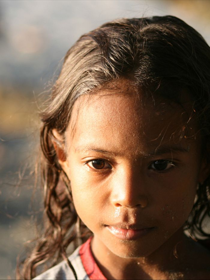 Genome reveals the Papuan population contains about six per cent Denisovan DNA (iStockphoto: anderssn_oysten)