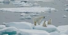 Timeline of Shell Arctic Drilling Mishaps in 2012 | Wilderness.org