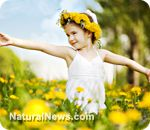 (NaturalNews) Most natural health advocates know that dandelion is a good liver tonic. But now research is showing that it's also a cancer fighter. This research discovery occurred at Windsor University in Windsor, Canada.