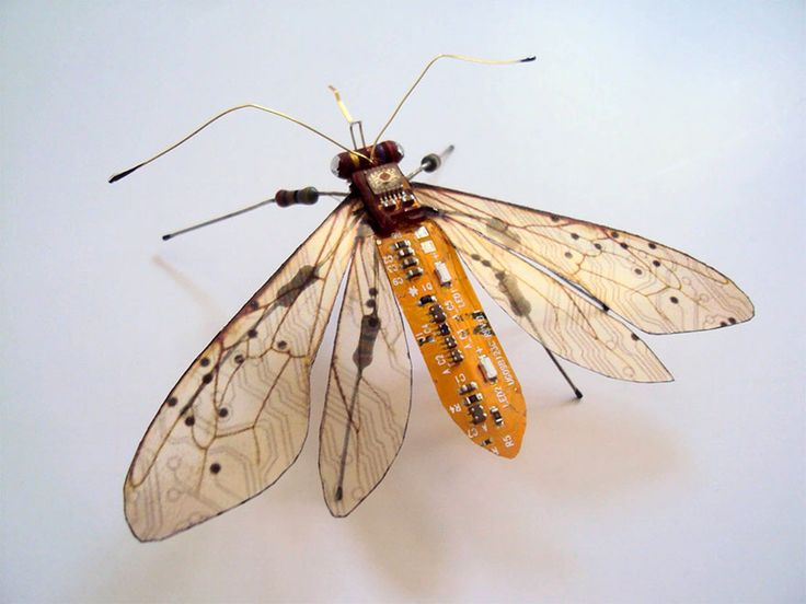 Winged Insects Made From Old Computer Circuit Boards And Electronics by Julie Alice Chappell (https://www.facebook.com/pages/Julie-Alice-Chappell-Artist/146001165481339)