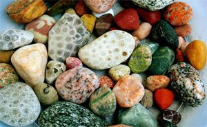 """Petoskey Stones are the fossilized remains of a coral that grew in Michigan 350 million years ago. Petoskey means """"rays of rising sun"""" in Indian. This stone is found nowhere else in the world."""