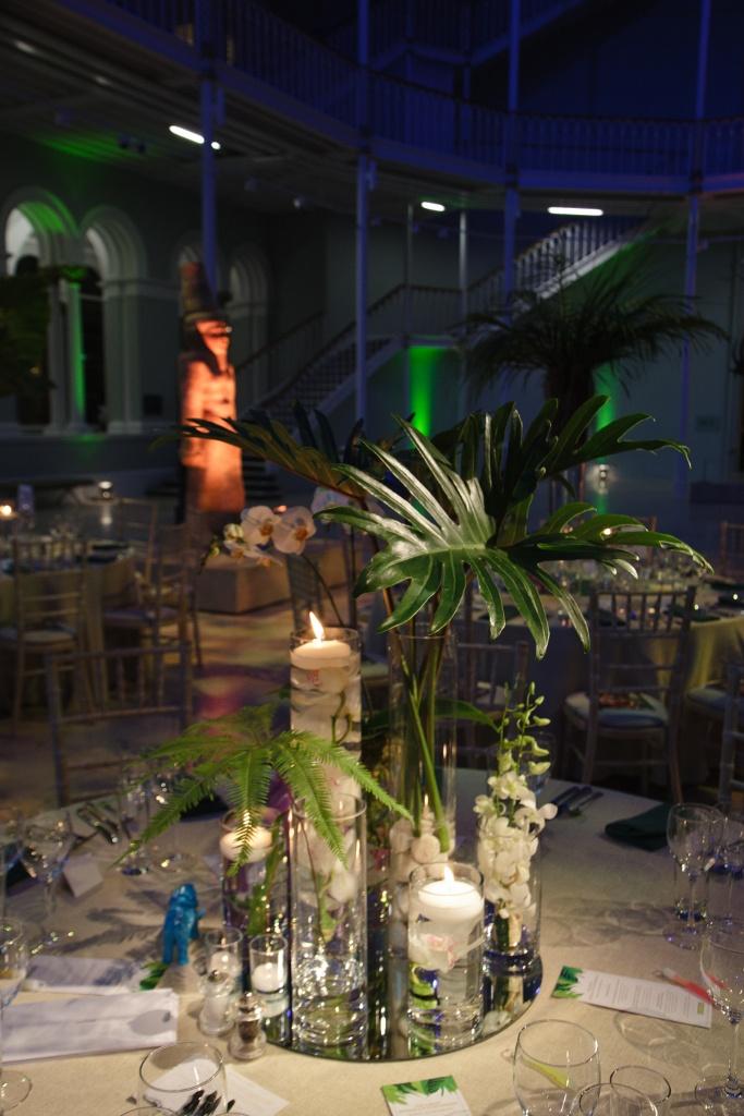 11 Best Jungle Theme Images On Pinterest Themed Weddings Jungle
