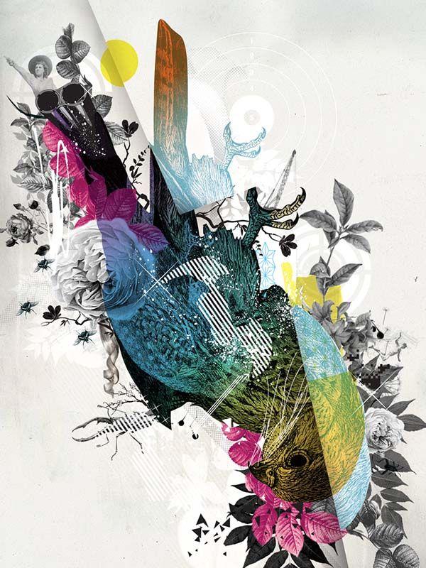 Vault 49, Birdy
