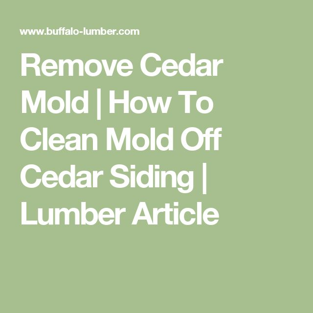 17 Ideas About Cleaning Mold On Pinterest Mildew