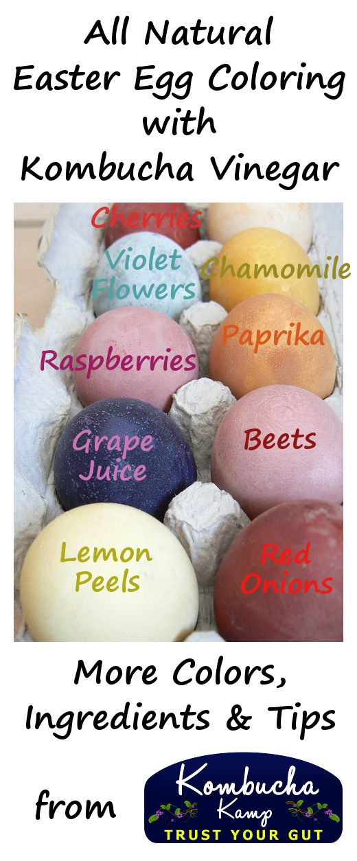 This Easter, ditch the chemical dyes and return to nature to color your eggs. Using Kombucha Vinegar in the dye gives the color more saturation power.