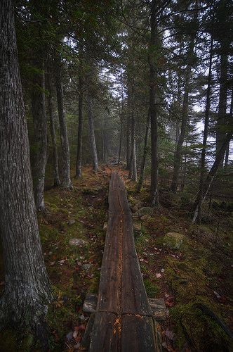 Jordan Pond, Acadia National Park | Flickr: Intercambio de fotos