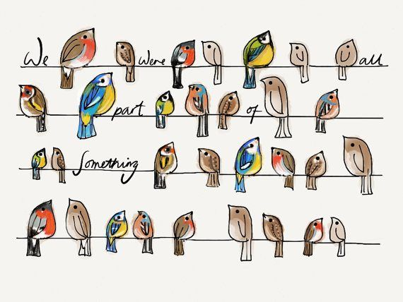 Original Bird Illustration. Am I the only one obsessed with birds right now?! Love this