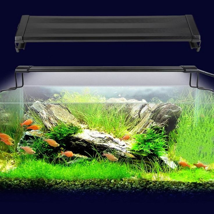 23.90$  Watch now - http://alip99.shopchina.info/go.php?t=32585059198 - Hot LED Aquarium Fish Tank Fishbowl Light Waterproof LED Light Bar Submersible Underwater SMD 11W 50 CM LED Light Lamp New 23.90$ #aliexpresschina