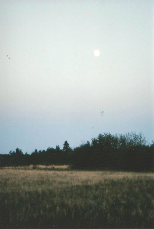 Nature + Landscape Photography Inspiration · Beautiful Moody Nature · Moon