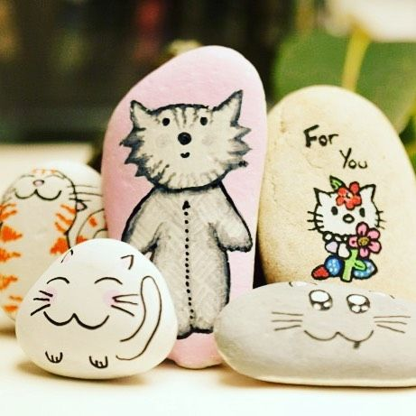 Crazy cat lady collection of rocks for rock hide and seek