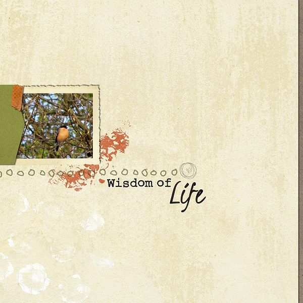Wisdom of Life  by t for me designs  at Scrap Art Studio   http://www.scrapartstudio.com/shop/index.php?main_page=index&manufacturers_id=28