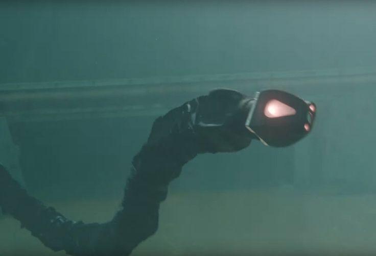Robo-wąż pływa jak prawdziwy - po co?