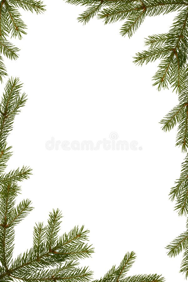 Christmas Frame Christmas Background Fir Tree Branches Frame Isolated On Whit Spon Background Fir Chris Christmas Frames Christmas Background Frame