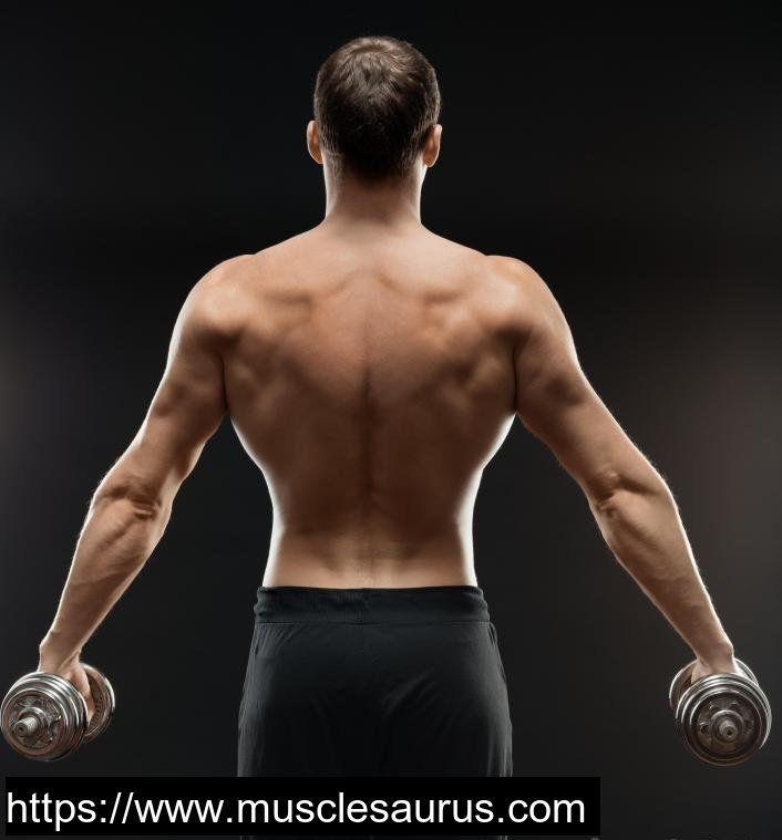 боксеры сбоку и со спины фото имени динара связано