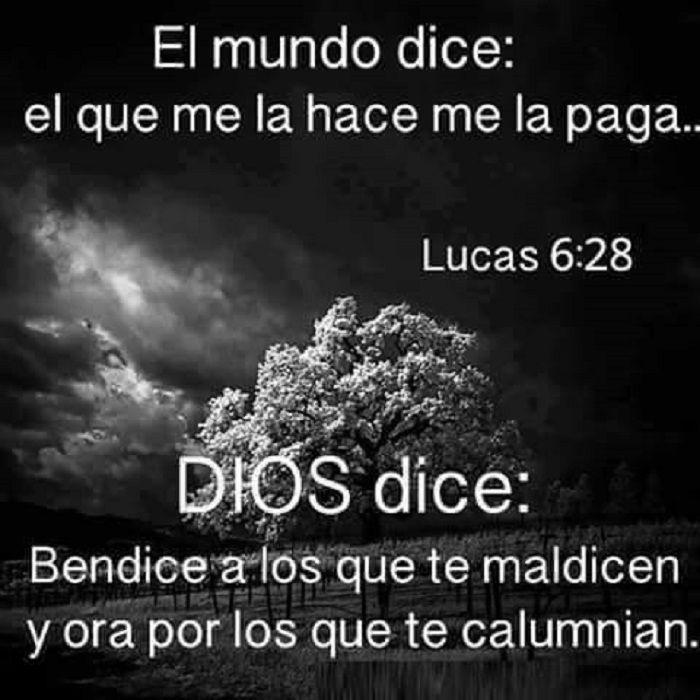 El mundo dice: el que la hace me la paga... Dios dice; bendice a los que te maldicen y ora por los que te calumnian. Lc 6.28