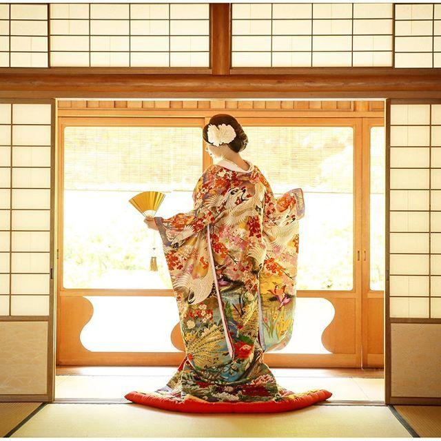 【erikakanzaki】さんのInstagramをピンしています。 《#着物 #pic  この着物本当に気に入ってる 柄わかるかな?光加減が最高 igに載ってる前撮り写真、みんな綺麗やね〜ついついみとれて、自分がどんなだったか忘れる(笑) 顔より当たり前だけど着物に注目だね‼︎✨ 柄が多い派手なのすき❤️ 夏感もでてるし やはり着物は古典柄だね( ´ ▽ ` )ノ  #和装前撮り #綺麗 写真がね(笑) #写真#和装#プレ花嫁#嬉しい#真夏#新緑 #青空#色打掛#人生最高 な時かな! #着物#古典柄 #豪華絢爛 #鶴#桜#金》