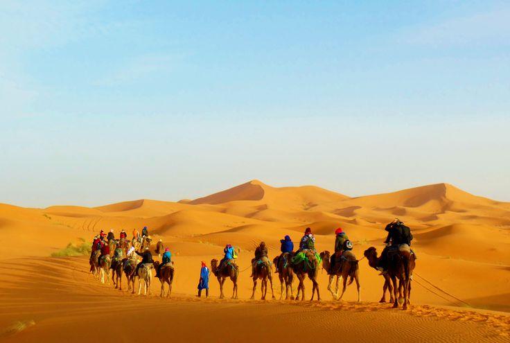 Sahara (Morocco)