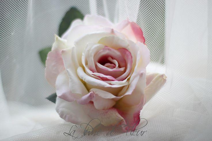 Alice rose full bloom blushing pink |