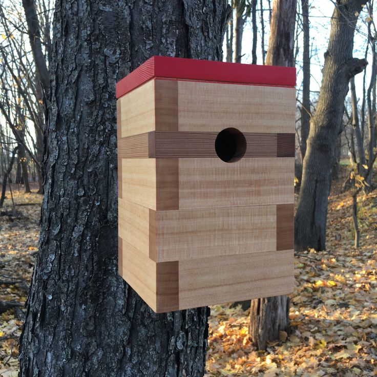 A personal favorite from my Etsy shop https://www.etsy.com/listing/400934541/modern-cedar-birdhouse-wmadrid-red-roof