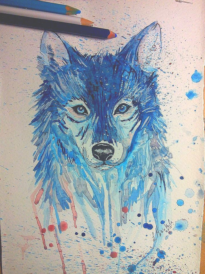 wolf | zoom | digart.pl