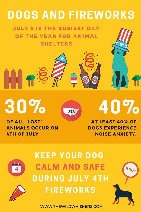 Dogs and Fireworks | Dog Anxiety | Separation Anxiety in Dogs | 4th of July | Pet Safety | Dogs Calm